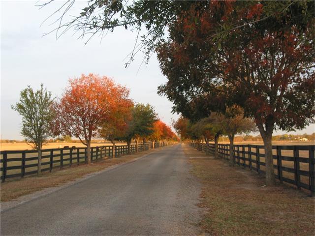 108 River Valley Dr, Georgetown, TX 78626 (#6287579) :: Forte Properties