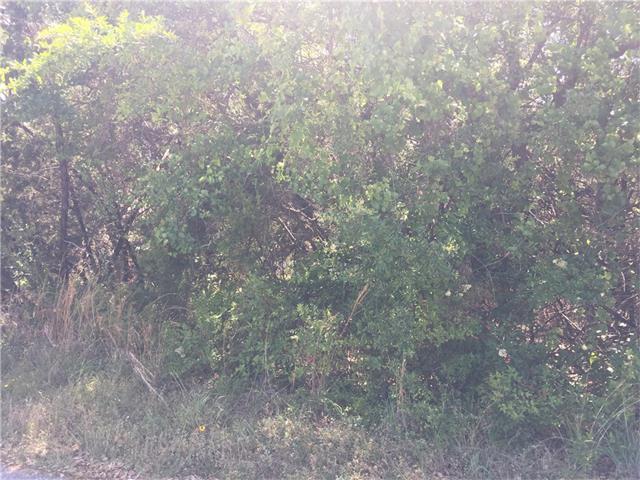 21801 Mcallister Cir, Lago Vista, TX 78645 (#6311150) :: Forte Properties