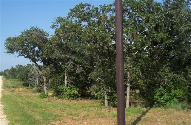 0 (lot 176) Sam Houston Pkwy, Luling, TX 78648 (#6312448) :: Forte Properties
