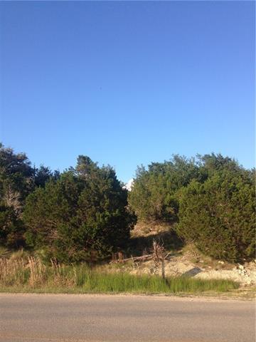 10117 Longhorn Skwy, Dripping Springs, TX 78620 (#6331191) :: Forte Properties
