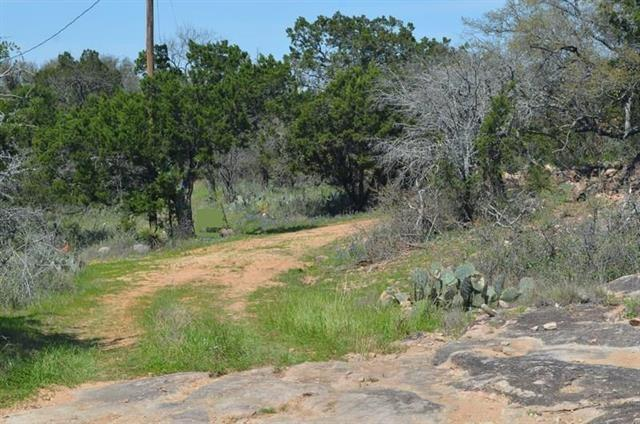 Lot 9 & 10 Suzann, Burnet, TX 78611 (#6357223) :: Zina & Co. Real Estate
