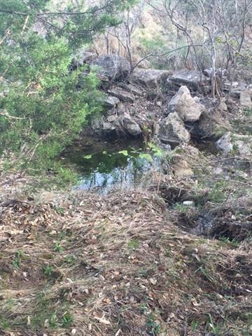 Dripping Springs, TX 78620 :: The Heyl Group at Keller Williams