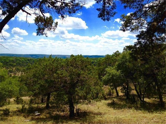 86.2708 acres of Vista Verde Path, Wimberley, TX 78676 (#6464489) :: The ZinaSells Group