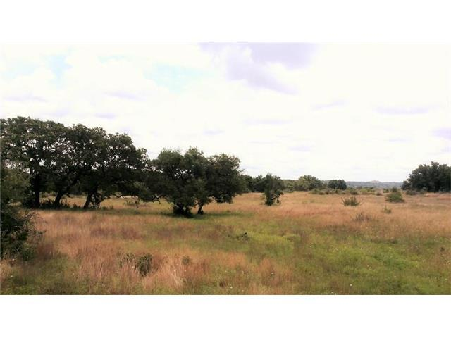 2275 Prochnow, Dripping Springs, TX 78620 (#6511405) :: Forte Properties