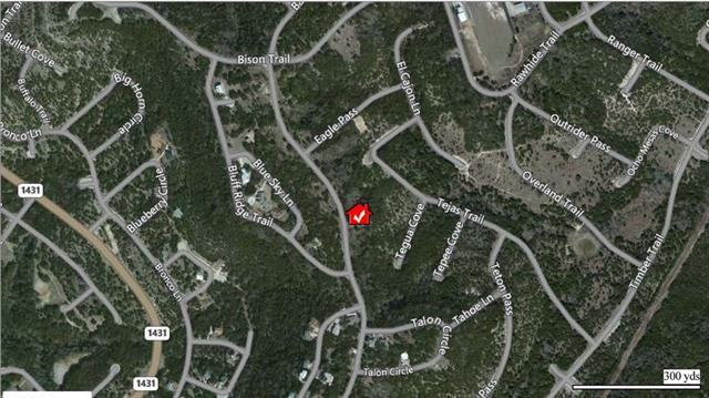 8615 Bar K Ranch Rd, Lago Vista, TX 78645 (#6555823) :: The Heyl Group at Keller Williams