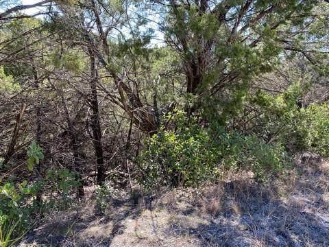 20901 Post Oak Dr, Lago Vista, TX 78645 (MLS #6603715) :: Brautigan Realty