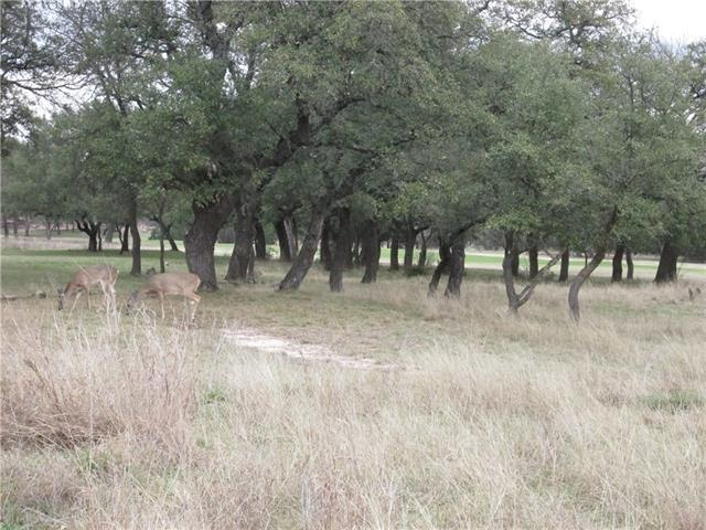 109 Denny Fox Dr, Burnet, TX 78611 (#6607714) :: Forte Properties