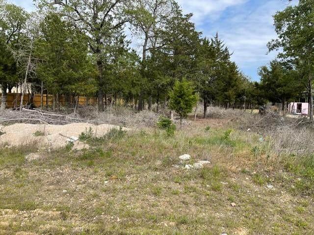 107 Alder Dr, Cedar Creek, TX 78612 (MLS #6683041) :: Vista Real Estate