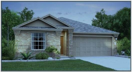 261 Blue Springs Pass, Kyle, TX 78640 (#6693018) :: Papasan Real Estate Team @ Keller Williams Realty