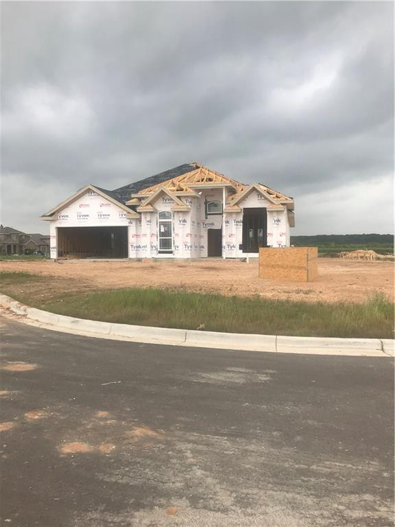 109 Emery Oak Ct, San Marcos, TX 78666 (#6721915) :: Ana Luxury Homes