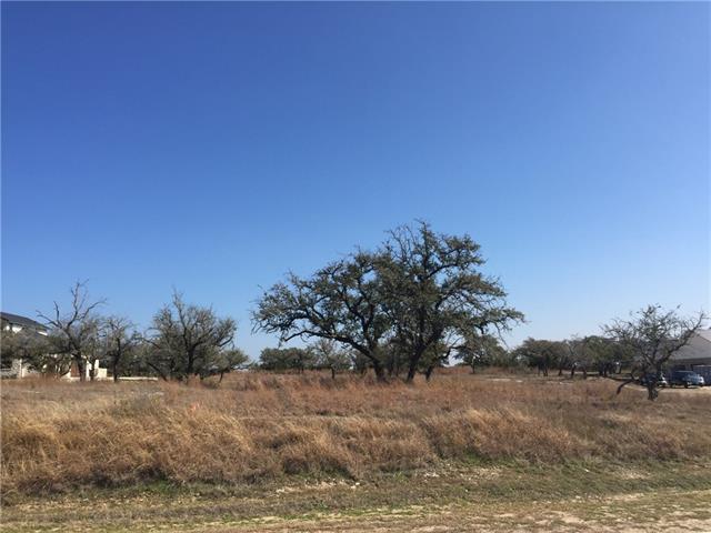 8601 Rollins Dr, Austin, TX 78738 (#6770110) :: Forte Properties