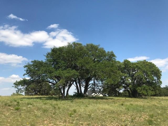 108 Quiet Oak Cv, Liberty Hill, TX 78642 (#6821470) :: Watters International