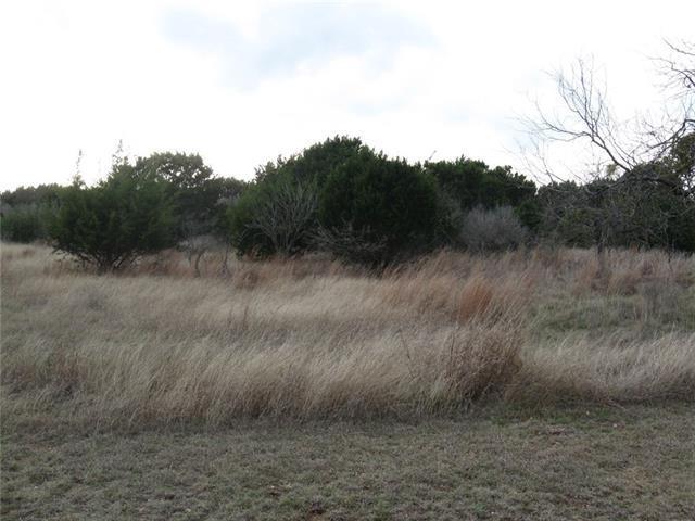 19A Ridge Harbor Dr, Spicewood, TX 78669 (#6861144) :: The ZinaSells Group