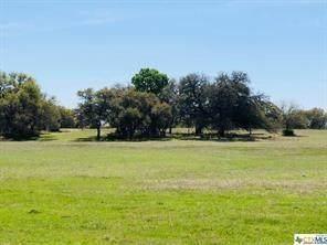TBD E Trimmier Road Rd, Killeen, TX 76542 (#6862090) :: Papasan Real Estate Team @ Keller Williams Realty