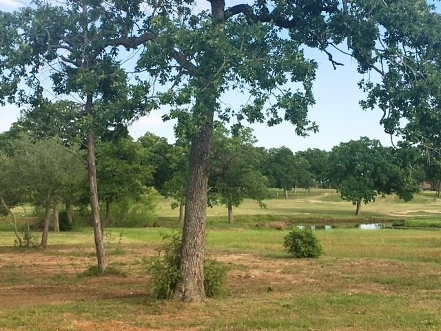 141 Riverwalk Ln, Bastrop, TX 78602 (#6873578) :: The Heyl Group at Keller Williams