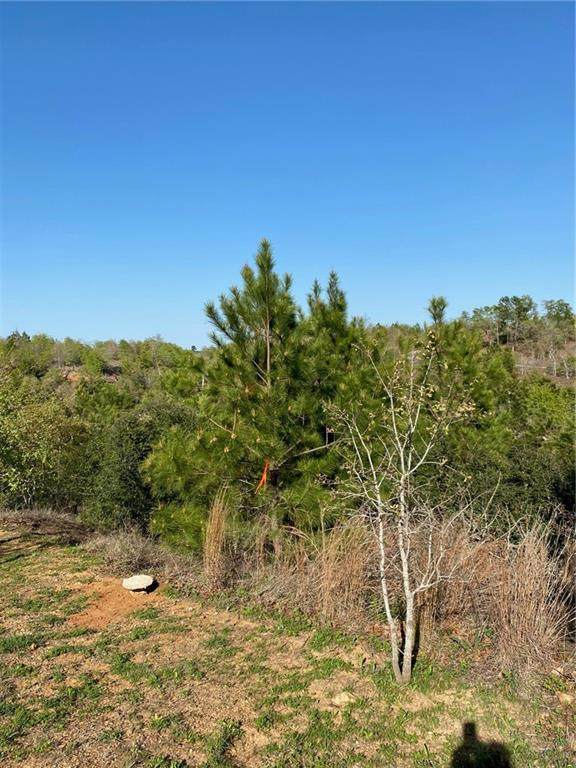 Lot 575 Ioa Ct, Bastrop, TX 78602 (MLS #6882486) :: Brautigan Realty