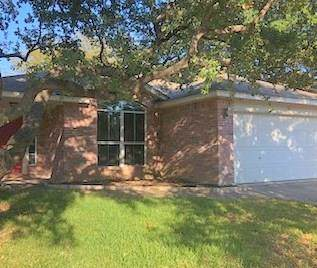 3623 Spring Canyon Trl, Round Rock, TX 78681 (#6998050) :: 12 Points Group