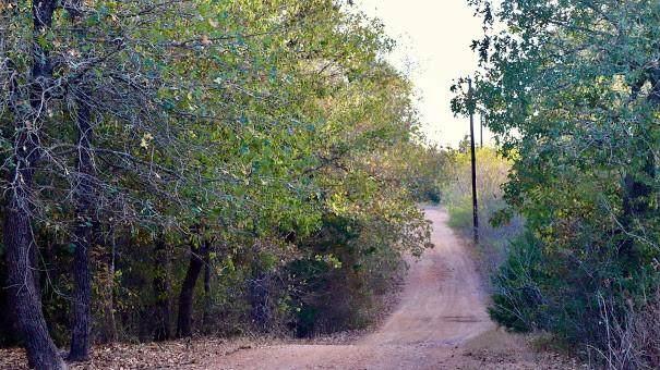 279 Earl Callahan Rd B, Cedar Creek, TX 78612 (#7002306) :: Realty Executives - Town & Country