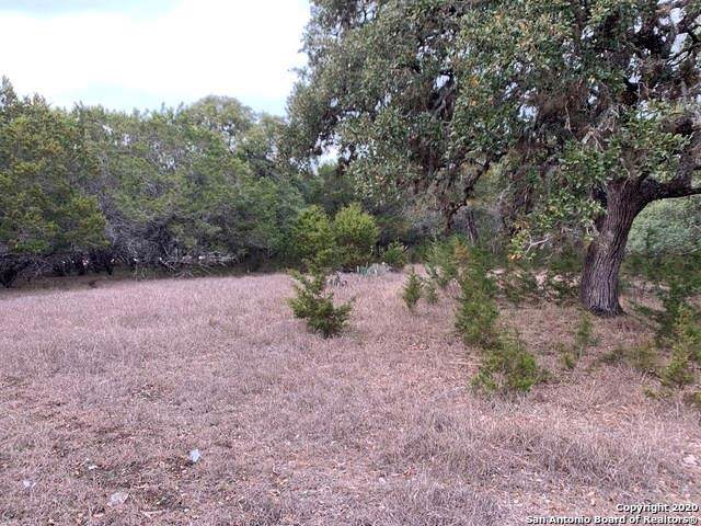 0000 Tbd, Spring Branch, TX 78070 (#7094433) :: The Perry Henderson Group at Berkshire Hathaway Texas Realty