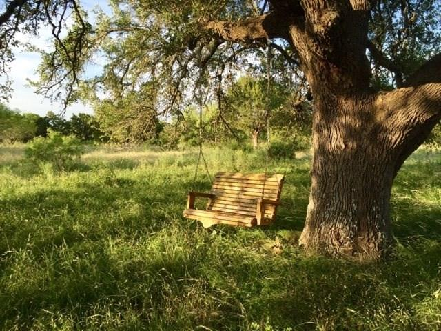 100 Double Horn Trl, Spicewood, TX 78669 (#7216443) :: The ZinaSells Group