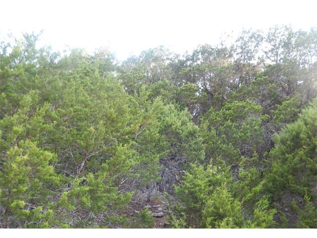 21005 Stone Cliff Dr, Lago Vista, TX 78645 (#7360407) :: Forte Properties