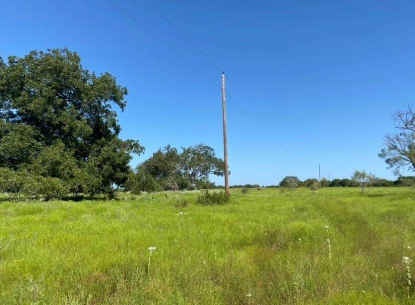 820 County Road 336 Rd - Photo 1