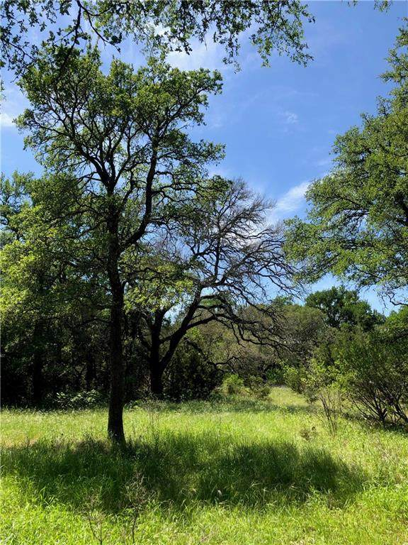 San Marcos, TX 78666 :: Papasan Real Estate Team @ Keller Williams Realty