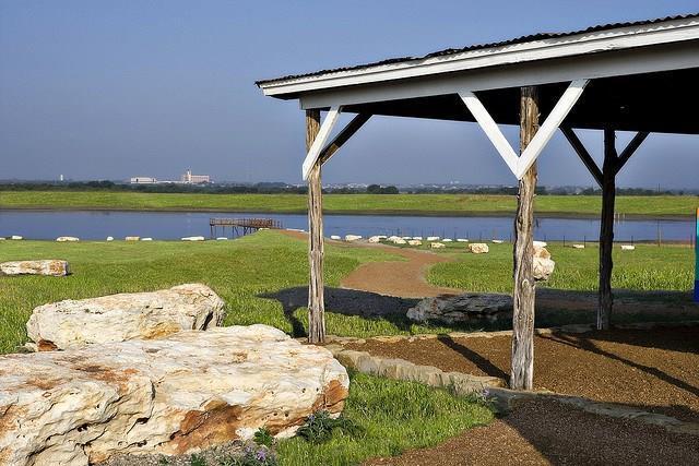 3116 Margarita Loop, Round Rock, TX 78665 (#7455737) :: Ben Kinney Real Estate Team