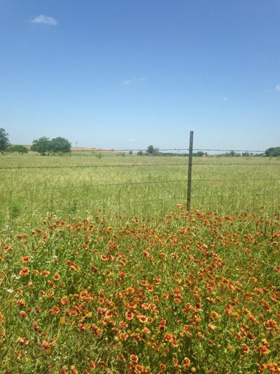 N Fm 973 Rd, Manor, TX 78653 (#7580992) :: Papasan Real Estate Team @ Keller Williams Realty