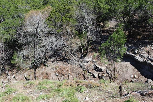 Lot 540 Little Beaver Trl, Austin, TX 78734 (#7669942) :: Forte Properties