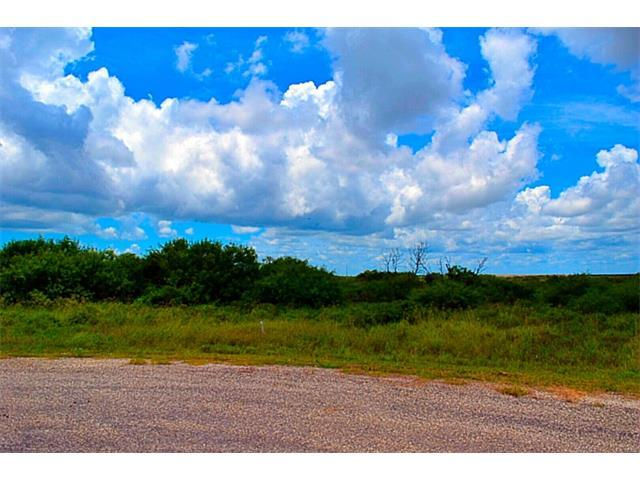 208 Drum Dr, Other, TX 78382 (#7713164) :: Realty Executives - Town & Country