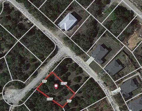 2305 Whitney Cv, Lago Vista, TX 78645 (#7716624) :: Papasan Real Estate Team @ Keller Williams Realty