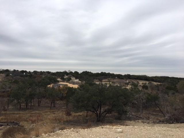 133 Taylor Creek Way, Liberty Hill, TX 78642 (#7735715) :: RE/MAX Capital City