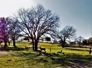 200 La Serena Loop, Llano, TX 78657 (#7774637) :: The ZinaSells Group