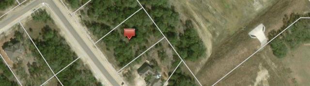 1366 Merlot, New Braunfels, TX 78132 (#7775382) :: Forte Properties