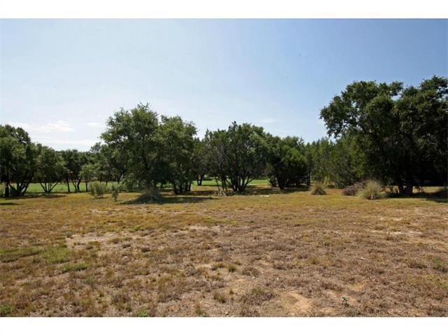 218 Black Wolf Run, Austin, TX 78738 (#7796313) :: Forte Properties