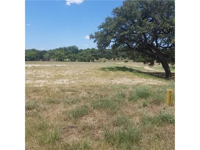 400 Waters Edge Cv, Dripping Springs, TX 78620 (#7842574) :: Papasan Real Estate Team @ Keller Williams Realty