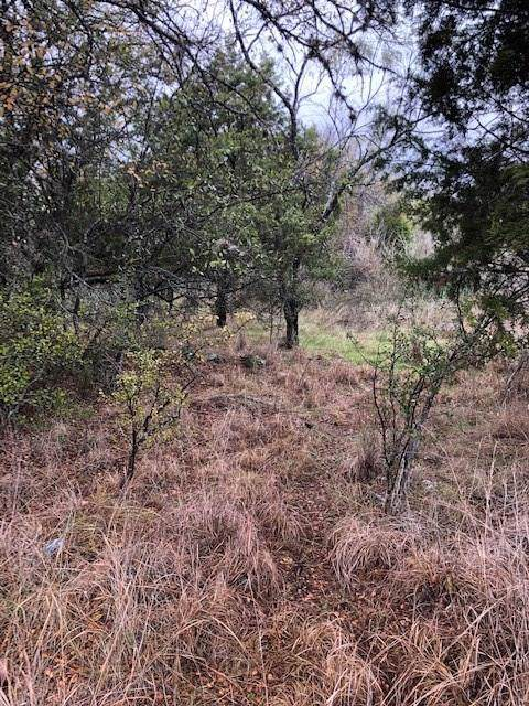 lot 456 Sandy Mountain Dr, Sunrise Beach, TX 78643 (#7850544) :: The Perry Henderson Group at Berkshire Hathaway Texas Realty