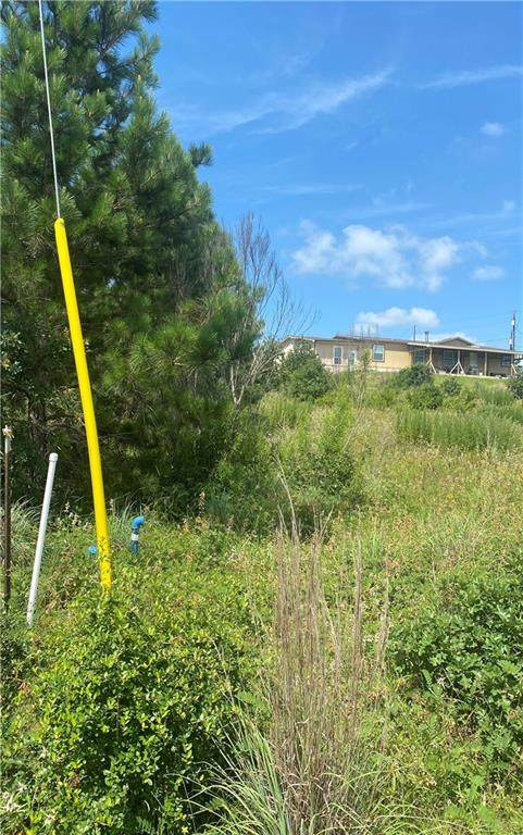 000 Lakewood Ct, Bastrop, TX 78602 (#7858324) :: Papasan Real Estate Team @ Keller Williams Realty