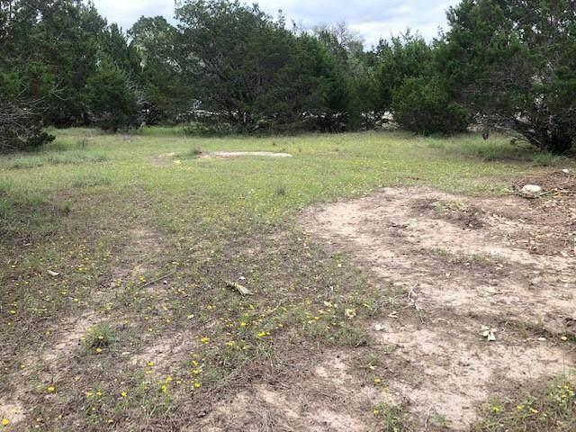 2307 Whitney Cv, Lago Vista, TX 78645 (#7914455) :: Papasan Real Estate Team @ Keller Williams Realty