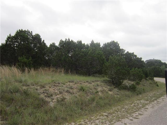 3411 Congress Ave, Lago Vista, TX 78645 (#7957196) :: Forte Properties