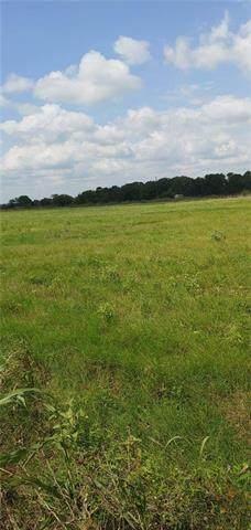 00 County Road 434 Loop Loop, Rockdale, TX 76567 (#7985825) :: The Perry Henderson Group at Berkshire Hathaway Texas Realty