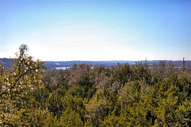 21501 Surrey Ln, Lago Vista, TX 78645 (#8002467) :: Forte Properties