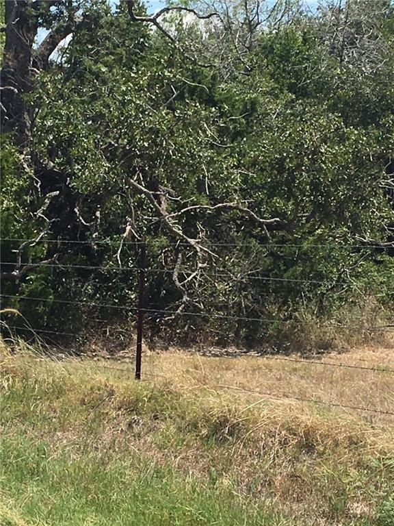 TBD 0000 Shiloh Rd, Bastrop, TX 78602 (#8017372) :: Papasan Real Estate Team @ Keller Williams Realty