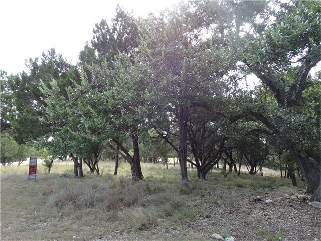 18019 Kingfisher Ridge Dr, Lago Vista, TX 78645 (#8031128) :: The Perry Henderson Group at Berkshire Hathaway Texas Realty
