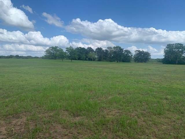 TBD County Road 319, Rockdale, TX 76567 (#8085425) :: Watters International