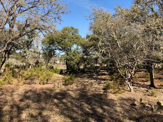 423 Hidden Springs Dr, Spring Branch, TX 78070 (#8093014) :: Forte Properties