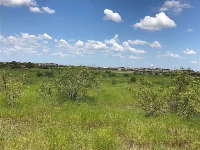 TBD Hillside Terrace, Buda, TX 78610 (#8121348) :: TexHomes Realty