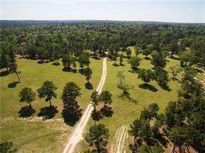212 Meuth Cemetery Rd, Red Rock, TX 78662 (#8126896) :: Watters International