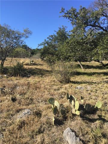 445 Clayton Nolen Dr, Horseshoe Bay, TX 78657 (#8128695) :: Papasan Real Estate Team @ Keller Williams Realty
